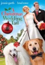 Bir Noelde Evlilik Hikayesi 2011 tek part izle