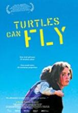 Kaplumbağalar da Uçar film izle